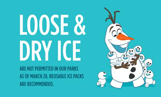 novas regras disney gelo solto