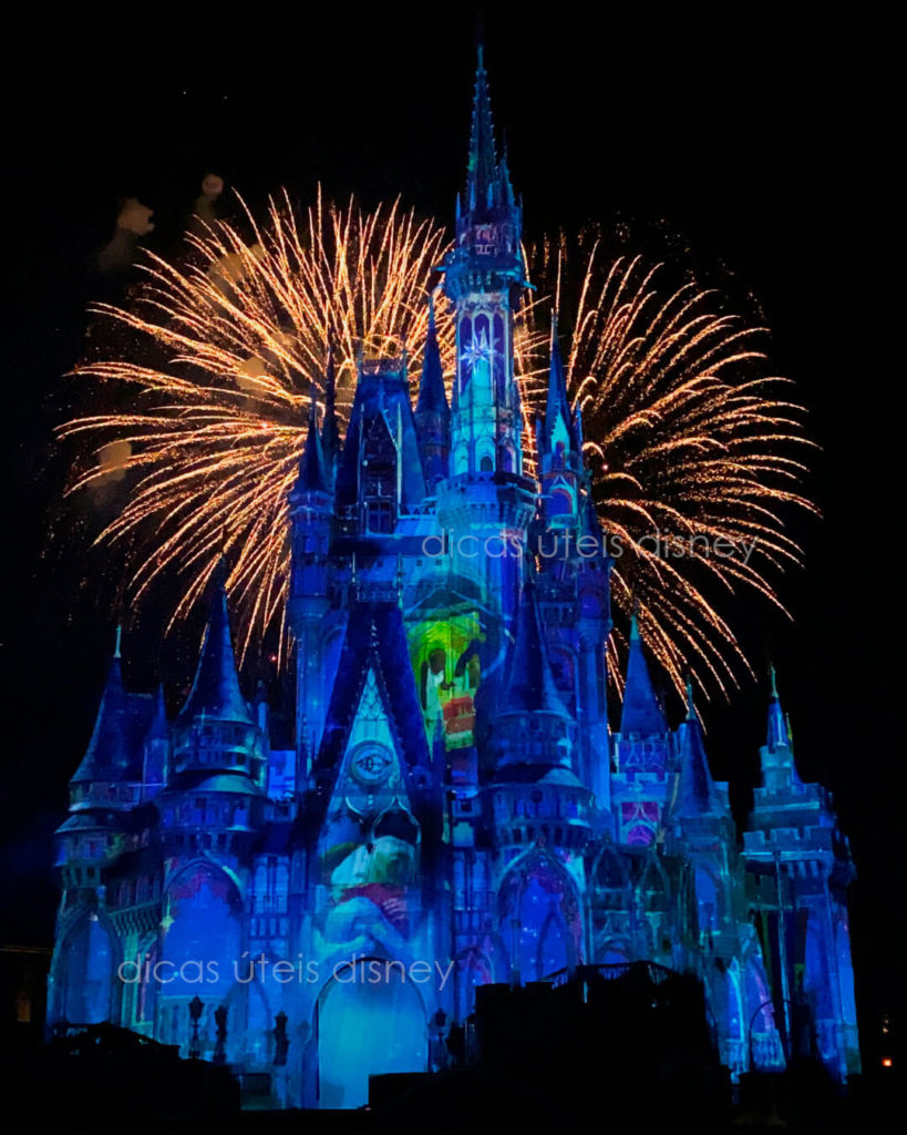 shows do Magic Kingdom happily ever after
