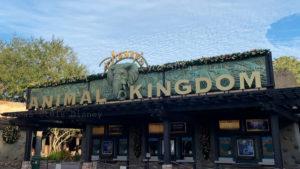 atracoes concorridas animal kingdom