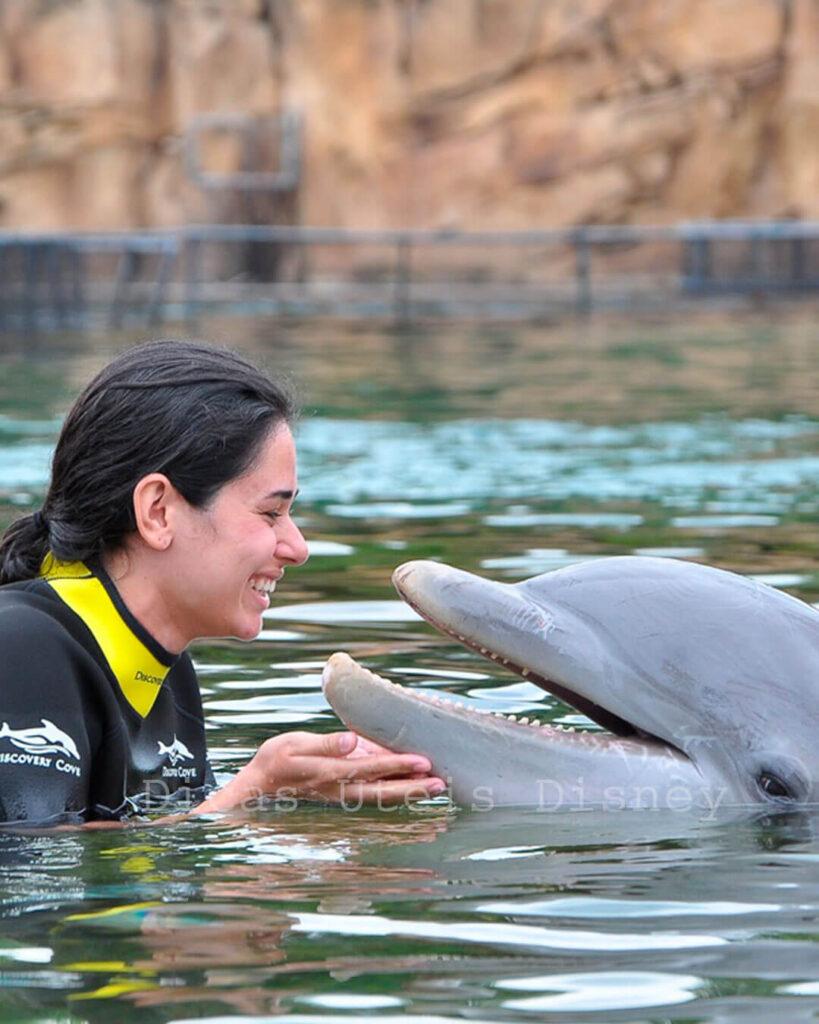 parques além Disney dicovery cove nado golfinho