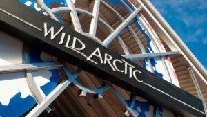 Como-e-area-ice-breaker-seaworld-atracao-wild-artic--destaque-dicas-uteis-disney