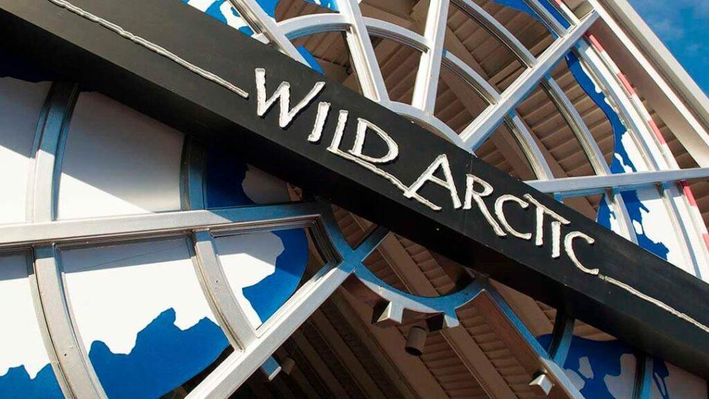 Como-e-area-ice-breaker-seaworld-atracao-wild-artic-dicas-uteis-disney